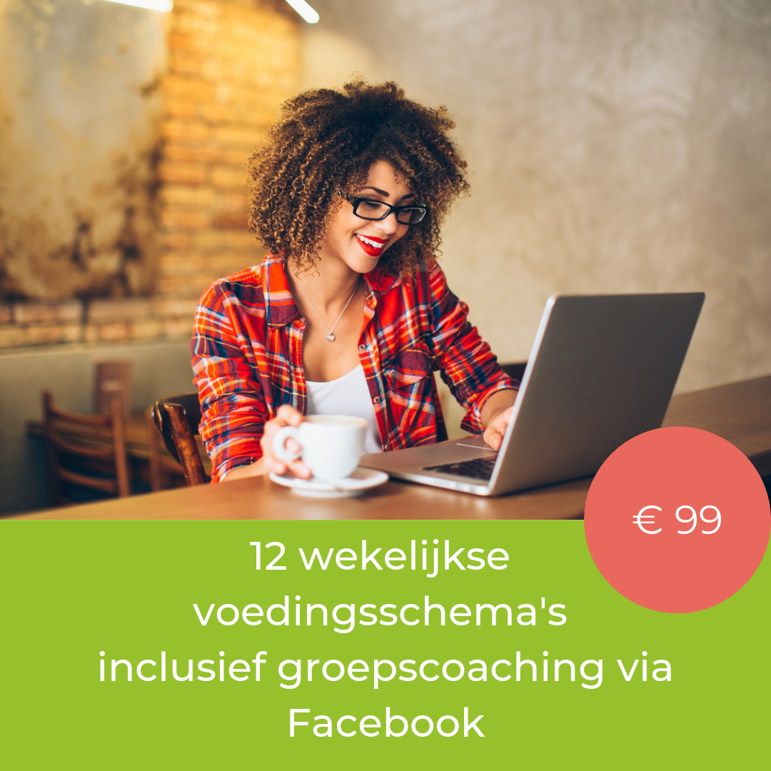 https://1balance.nl/product/ticket-to-health-online-vrouw-groepscoaching/